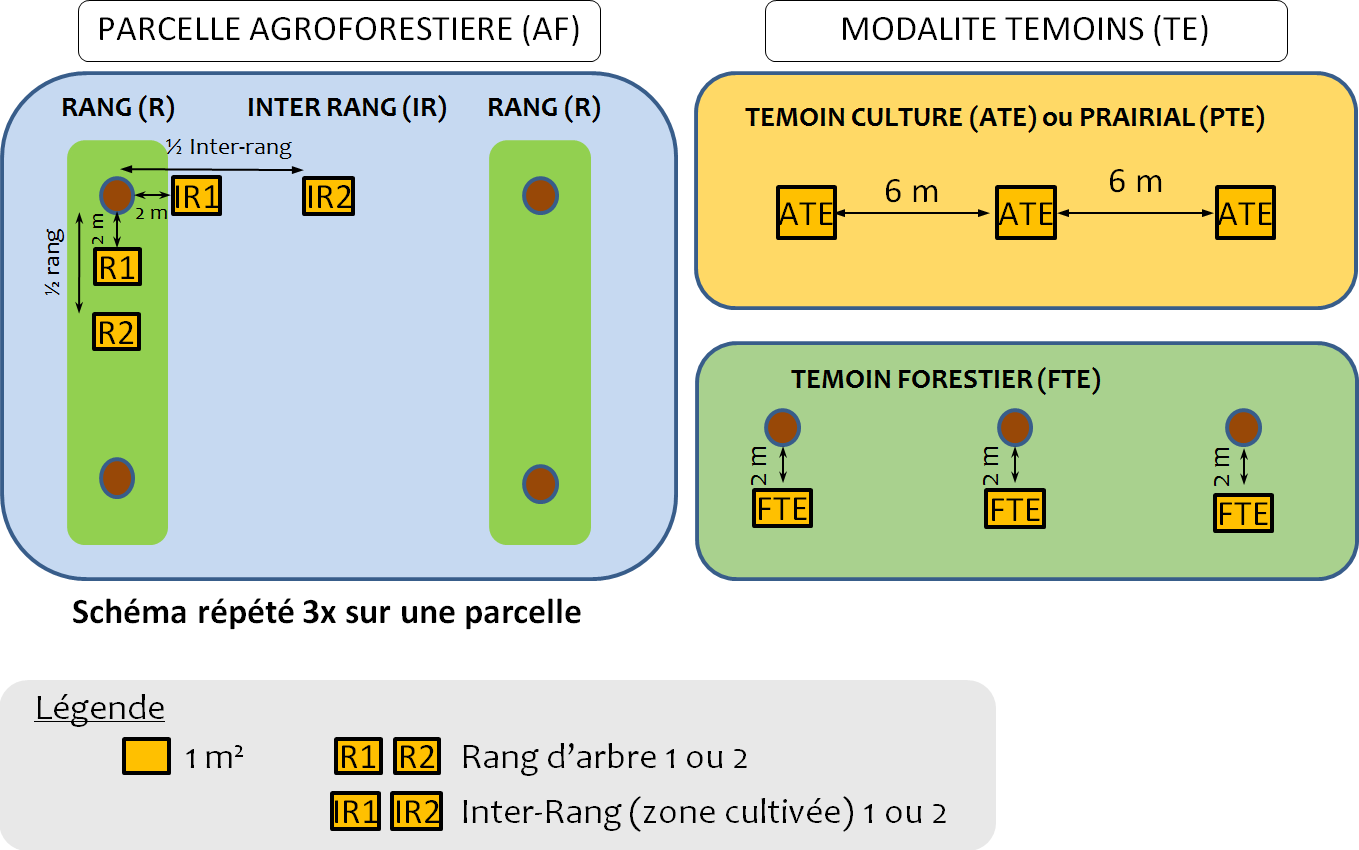 Agripsol Dispositif Etude