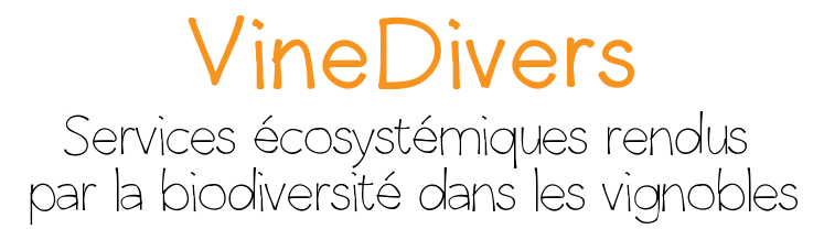 titre_vinedivers.png