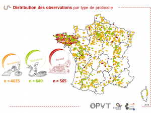 OPVT Result2 DistributionSpatialeObservationProtocole