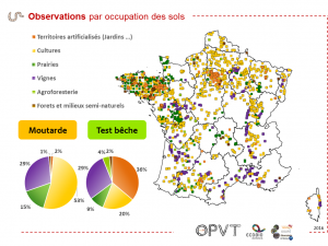 OPVT Result3 DistributionSpatialeObservation OccupSol